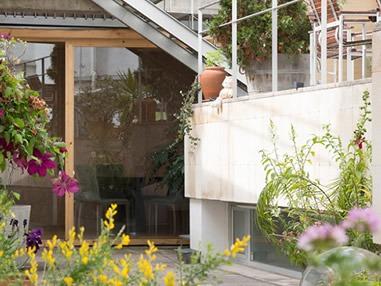 Mantenimiento y reposición terraza ajardinada de la empresa Ecooo
