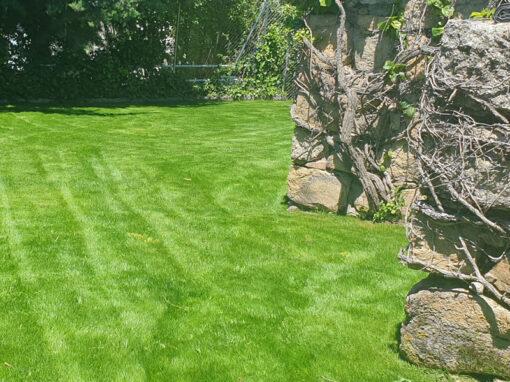 Intervención integral: Creación de pradera, Desbroce, Plantación de arbolado autóctono y ornamental, poda